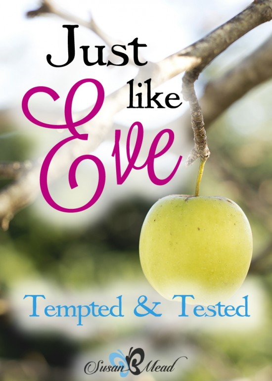 Every time I test a boundary, I'm acting. Just. Like. Eve. Ever been there? Our faith is being tested as we are tempted. Wanna learn to pass the test? Read on...