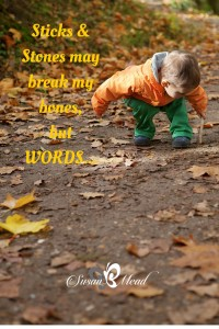 Have you heard sticks and stones may break my bones but words will never hurt me - yet you knew better? This post has 6 scriptures to guide your Words to be sweet and life-giving.