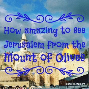 Go UP to Jerusalem. Have you ever heard you go UP to Jerusalem? This post provides 5 scripture regarding God's promises about Jerusalem.