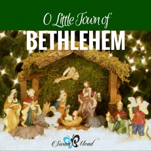 There we were, at the mercy of a gun-toting guard at the gate to the little town of Bethlehem. Would he let us in? This post tells the old story of Christmas with a new twist. Enjoy.