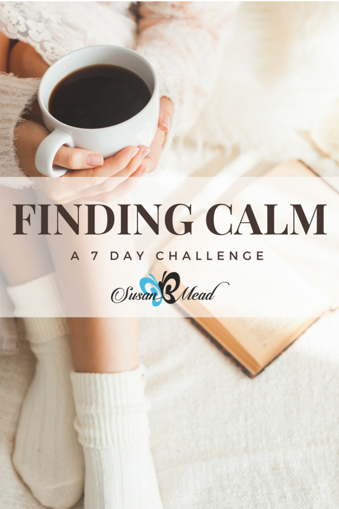 Are you ready to delve into His Holy Treasure Chest, the Bible, with me? We are going to take a challenge for 7 days into finding calm - think of it as a mini-course - and it is my free gift to you!